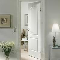 светлые двери в стиле с оттенком алого фото