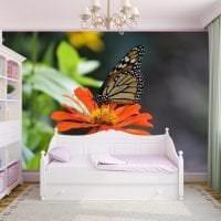 красивые бабочки в интерьере прихожей картинка