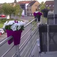 яркие цветы на балконе на этажерках дизайн фото
