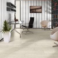 светлый белый дуб в стиле коридора картинка