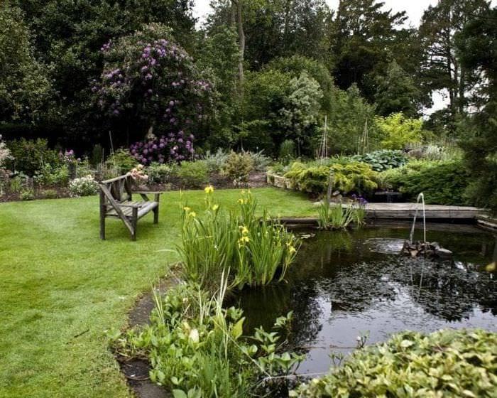 шикарный ландшафтный декор двора в английском стиле с деревьями