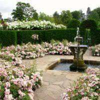 необычный ландшафтный декор сада в английском стиле с деревьями картинка