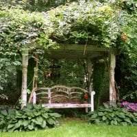 красивый ландшафтный дизайн двора в английском стиле с цветами фото