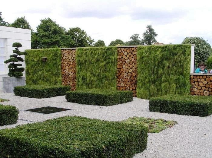 красивый ландшафтный дизайн двора в английском стиле с деревьями