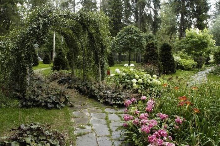 необычный ландшафтный дизайн двора в английском стиле с деревьями