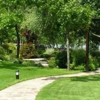 шикарный ландшафтный дизайн сада в английском стиле с цветами картинка