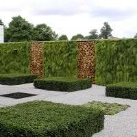 шикарный ландшафтный декор двора в английском стиле с деревьями фото