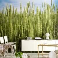 красивые фотообои с городскими пейзажами в кухню фото