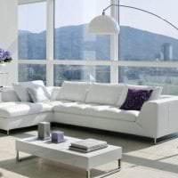 белый диван в дизайне квартиры картинка