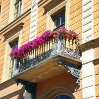 шикарные цветы в интерьере балкона на этажерках пример фото