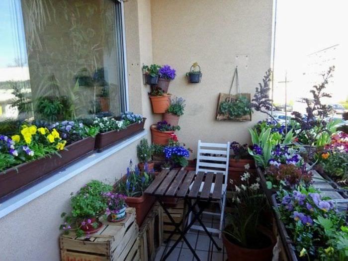 шикарные цветы на балконе на перемычках дизайн
