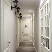 светлые двери в интерьере с оттенком темного фото