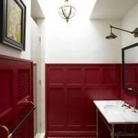 яркий цвет марсала в стиле ванной фото