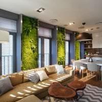 яркий эко дизайн коридора картинка