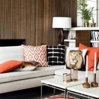 яркий дизайн коридора в африканском стиле картинка