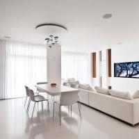белые стены в интерьере прихожей в стиле минимализм картинка