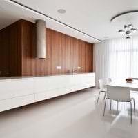 белые стены в дизайне квартиры в стиле скандинавия фото