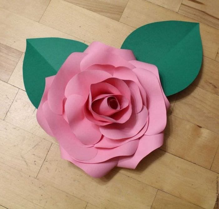 цветы из цветной бумаги фото приобрести