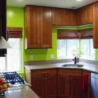 красивый фисташковый цвет в декоре кухни фото