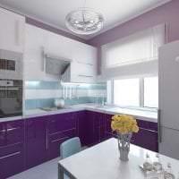современный фасад кухни в фиолетовом оттенке картинка