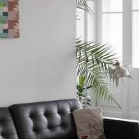 необычный дизайн гостиной в стиле авангард фото