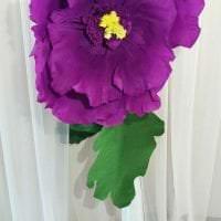 разноцветные бумажные цветы в декоре праздничного зала картинка