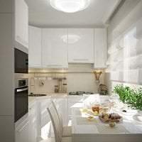 светлая белая мебель в дизайне кухни фото