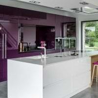 современный декор кухни в фиолетовом оттенке фото