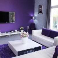 темный фиолетовый диван в стиле прихожей картинка