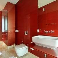 яркий бордовый цвет в стиле коридора картинка