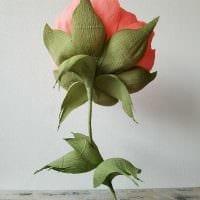 идея оригинального декорирования праздника бумагой картинка