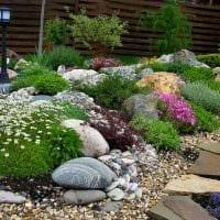 яркое декорирование садового участка своими руками картинка