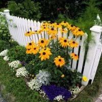 красивое оформление декора дачного участка цветами картинка