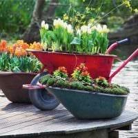 яркое декорирование садового участка подручными материалами фото