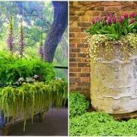 необычное украшение садового участка своими руками картинка
