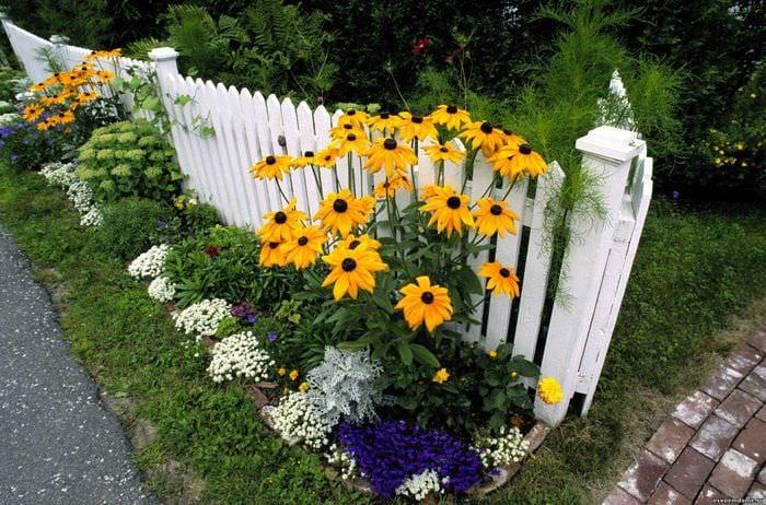 красивое создание дизайна дачного участка цветами