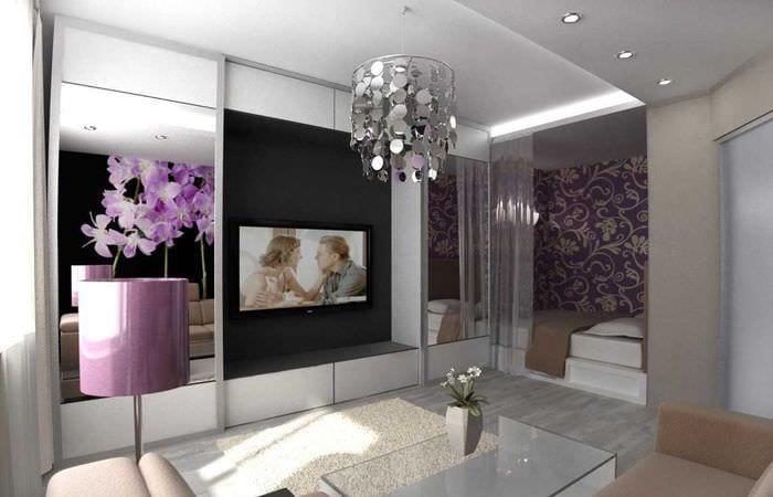 эхинодорус объединение спальни и гостиной фото начинает