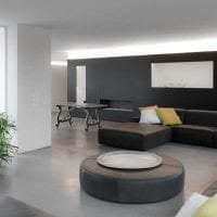 сочетание светлого серого в интерьере дома с другими цветами картинка