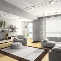 сочетание светлого серого в стиле гостиной с другими цветами фото