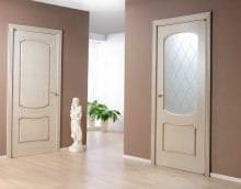 темные двери в интерьере кухни фото
