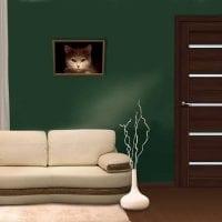 темные двери в дизайне комнаты фото