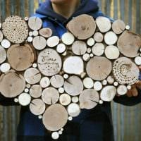 идея светлого декорирования помещения деревом своими руками фото