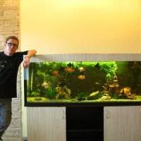 вариант оригинального декорирования домашнего аквариума фото