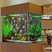 идея яркого украшения аквариума картинка