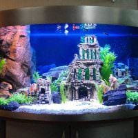 идея красивого оформления домашнего аквариума фото