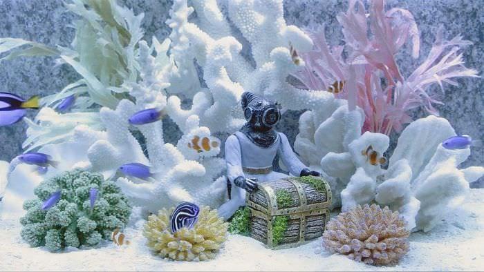 идея яркого оформления аквариума