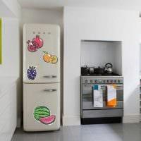 идея необычного оформления холодильника на кухне фото