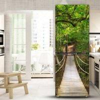 вариант яркого украшения холодильника на кухне фото