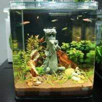 вариант оригинального украшения аквариума картинка