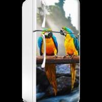 вариант яркого оформления холодильника фото